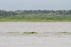 Looking across the Moose River from Moosonee just before high tide. Not much of the sandbar is visible.