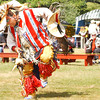 (091607):BED_NativeAmericanPowWow-- Norhtern traditional dancer, Don Barnaby, a member of the MikMaq tribe, and resident of Listuguj, Quebec performs. DIG IM No.3275...SUN Photo by Amanda-Beth Potter