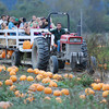 José Quezada/For the Times-Standard<br /> <br /> Free tractor and trailer rides were on hand for pumpkin pickers hauling their orange loot from fields jam packed with the gourd-like squash on Sunday at Christie's Ranch in Blue Lake. Hundreds of kids and families were readying for the coming Halloween and Thanksgiving season at the ranch, which also features a nine-acre corn maze for the adventurous to find their way out of the natural corn stalk puzzle. The pumpkin fields and maze are open weekdays from noon to 5:30 and weekends 9:30 AM to 5:30 PM.