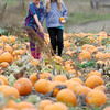 JosŽ Quezada/For the Times-Standard<br /> <br /> Gianna Panelli, 9, points out a prospective pumpkin to pick with her friend Jocelyn Bliven, 9, right. Pumpkins were ready for the picking as hundreds walked the huge pumpkin fields looking for their special holiday squash on Sunday at Christie's Ranch in Blue Lake.
