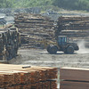 Shaun Walker/The Times-Standard<br /> <br /> A Pacific Lumber Co. front loader rolls through lumber yard in Scotia on Wednesday.