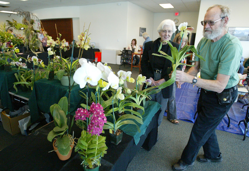 Shaun Walker/The Times-Standard<br /> <br /> Don and Sylvia Garlick of Fieldbrook look at a Lady Slipper orchid at the Humboldt Orchid Society's Annual Spring Show in the Humboldt Bay Aquatic Center in Eureka on Saturday. The event featured workshops, large displays of blooming orchids, and plants for sale.