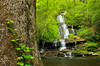 NC SMP DEEP CREEK TOMS BRANCH FALLS MAYAC_MG_3806bMMW