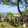 From atop Burial Hill with Plymouth harbor in background ~