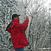 January 31, 2014.  Photographing hoarfrost on a branch.  Bean Rock Property, private in-holding at Cascade-Siskiyou NM, Oregon