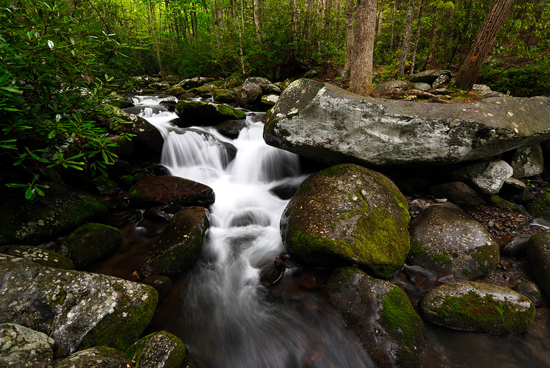 Boulder Block - Roaring Fork Motor Trail (Great Smoky Mountains National Park)