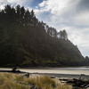 Oregon Coast #10