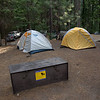 Hodgdon Meadows Campground #103! Home sweet home in Yosemite National Park for four beautiful, starry nights