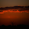 Sunset Reach: The branches of a dry tree reach toward the clouds at sunset, in silent supplication for rain to fall on a weary land.  Location: Hwange National Park, Zimbabwe, Africa.