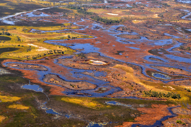 A small sample of the Okavango Delta from the air.  At this season (April 2012), the water is rising, flowing into the waiting channels, forming new islands, and creating a tapestry of old desert colors beside patches of fresh green.