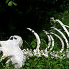Bleached bones from some long-deceased creature. A very large creature from the looks of it.