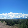 2013- NM- summer monsoons