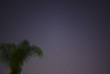 The Southern Cross and a palm tree, the view from my garden in Sydney on 2013-03-16.  Sony A100 DSLR with Sony 30/2.8, 30 s, f/2.8, ISO 400.