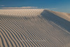 Wind continues to sculpt as sand blows across the Isla Magdalena dune