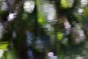 9730-2 And a third photo of abstract reflections. I created these abstracts to be more artistic than the documentarian images I usually make.