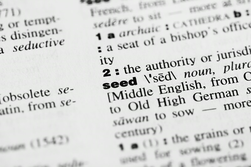 Dictionary Word: Seed