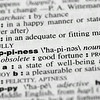 Dictionary Word: Happiness