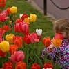 Girl an Tulips