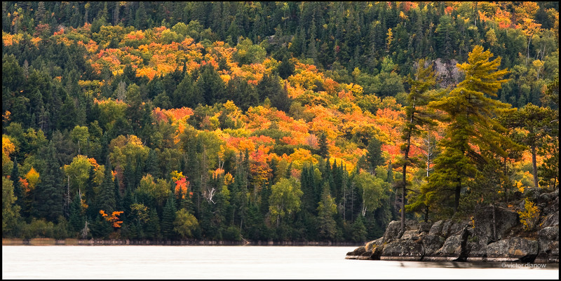 Algonquin Ont.Canon40D, Canon70-200 at 200mm, Sing-Ray LB polarizer, 6.0s at f/22.0