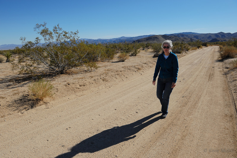 Peg walking in Joshua Tree