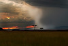 This landscape photograph was taken during sunset rainstorm within the Maasai Mara in Kenya, Africa (3/13).   This photograph is protected by the U.S. Copyright Laws and shall not to be downloaded or reproduced by any means without the formal written permission of Ken Conger Photography.