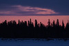 Sky before sunrise over Butler Island in the Moose River across from Moosonee.