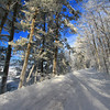 A Northwoods Frozen Wonderland 5