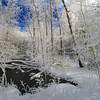 A Northwoods Frozen Wonderland 3