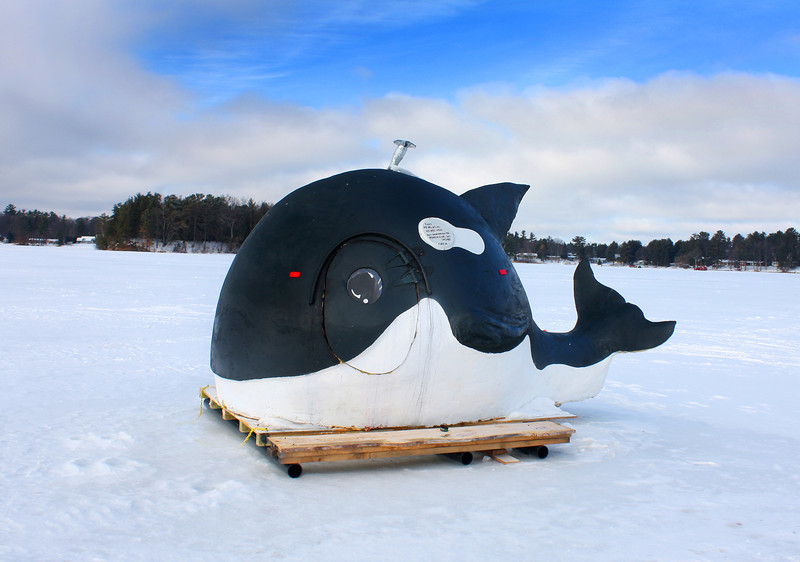 """  Orca the Whale Ice Shanty  """