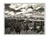 Iconic Ansel Adams, Snake River and Grand Tetons