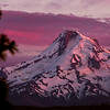 Mt. Hood in Alpenglow