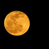 Full moon at 100% of full (golden phase) April 15, 2014
