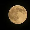 Waxing Gibbous Moon at 99.8% of full at 10:36 p.m. EST<br /> Various astronomy websites at the current time also reported the moon at 99.6% or 100% of full.  <br /> July 11, 2014 (The July Full Moon is a Supermoon)