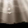 Crepuscular rays of light and birds of light dance in the Andean sky, Ecuador