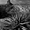 Weavers Needle, Superstition Mountains, Arizona © Douglas Remington - Ethereal Light Photography, LLC.  All Rights Reserved. Do not copy or download.