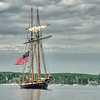 The American Privateer-Lynx