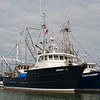 Fishing Vessel Agent no 1