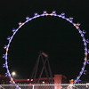 High Roller Observation Wheel at Night