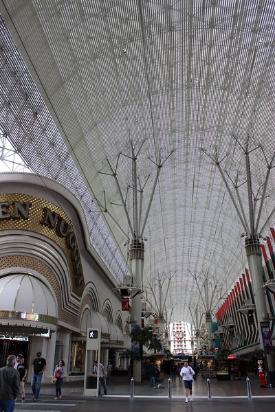 Golden Nugget under the Canopy with Zip Line