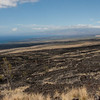 Looking towards Kohala on Mauka Highway.  Pu'u Anahulu is the huge lava flow to the right which emerged from Pu'u Wa'a Wa'a about 106,000 years BP