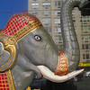 Elephant on Third Avenue with Empire State Building Reflection, NYC