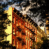 Tenements All in a Row - New York City