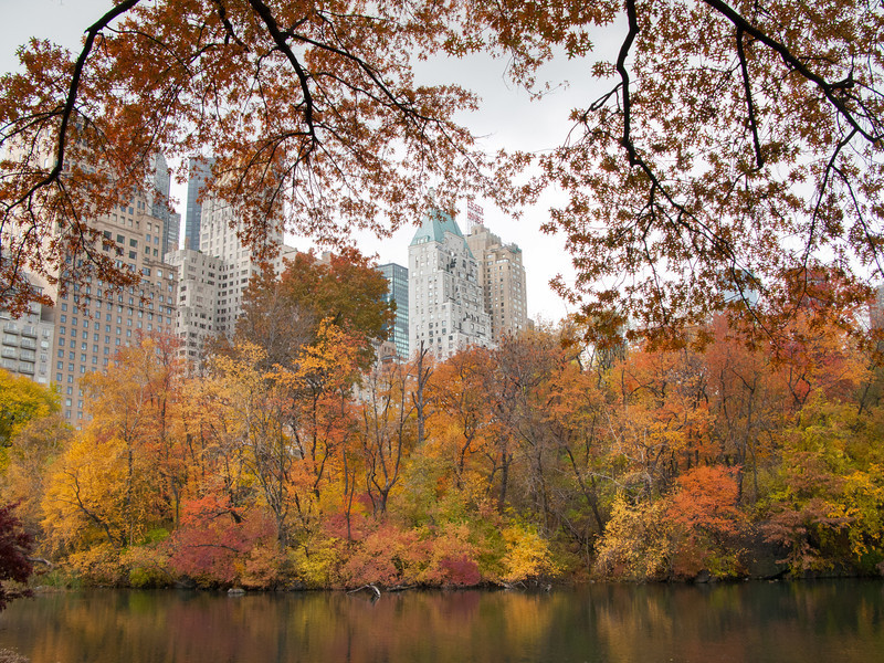 Autumn in Central Park, by Central Park South, New York City, New York