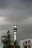 Sky Tower from College Hill<br /> Auckland