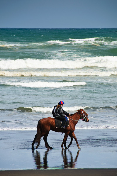 Horse ride on the beach at Muriwai on the west coast