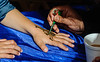 Henna being applied to a hand<br /> Diwali celebration<br /> Auckland Town Hall