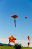 Kites flying over Bastion Point, in celebration of Matariki<br /> Auckland<br /> New Zealand