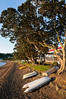 Beach front at sunset<br /> Russell<br /> Bay of Islands<br /> New Zealand