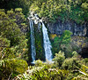 Dawson Falls Egmont National Park Taranaki New Zealand
