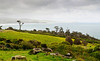 Long Point from the Florence Hill lookout<br /> The Catlins<br /> South Island<br /> New Zealand